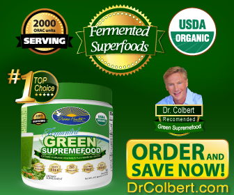 FERMENTED FOODS Healthy Diet Green Reviews